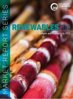 1810111019500002605_market_report_series_renewables_2018_550.jpeg